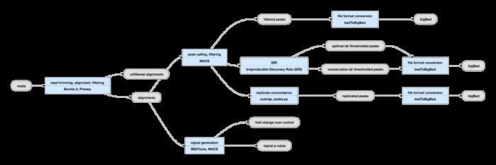 ATAC-Seq分析教程:重复样本的处理-IDR
