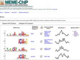 ATAC-Seq分析教程:用网页版工具做功能分析和motif分析