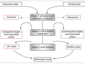 ATAC-Seq分析教程:ATAC-Seq、ChIP-Seq、RNA-Seq整合分析