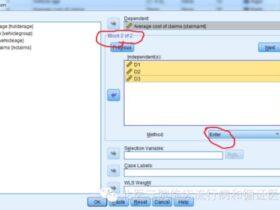 SPSS:回归分析中的哑变量设置